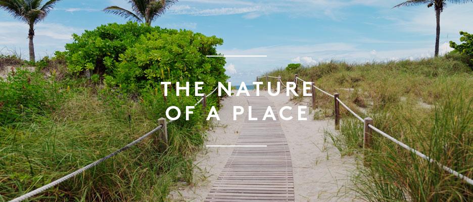 Miami Luxury Condos
